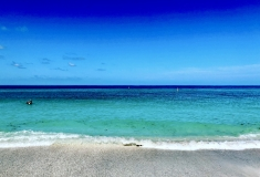Florida-Sights-Pics-for-Gallery-19