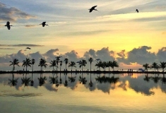 Florida-Sights-Pics-for-Gallery-28