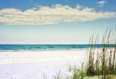 Florida-Sights-Pics-for-Gallery-31