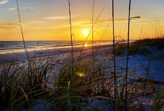 Florida-Sights-Pics-for-Gallery-35